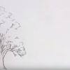 Want To Draw Trees That Don't Look Like Broccoli? Check Out This AMAZING Demo