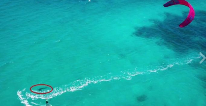 Video: Shark spotted just metres away from unsuspecting kite surfer