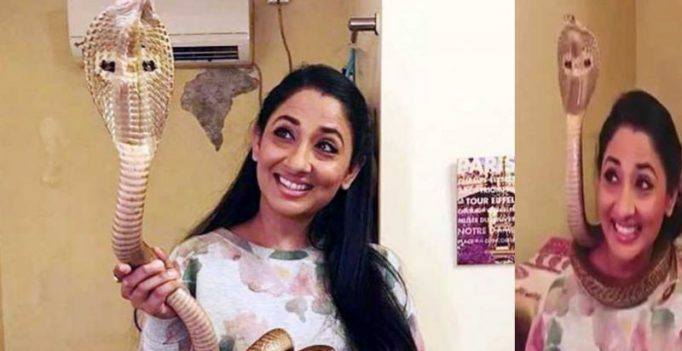TV actress Shruti Ulfat arrested for posing with live cobra, granted bail