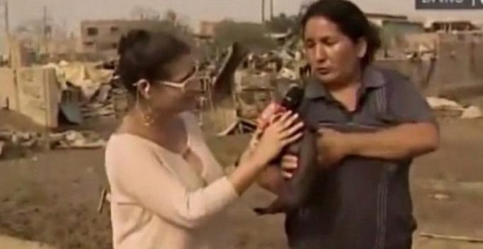 Woman breastfeeds a baby pig on live television in Peru