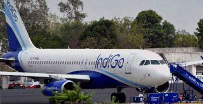 IndiGo pilot caught lying to passengers to 'cover-up' absence of co-pilot