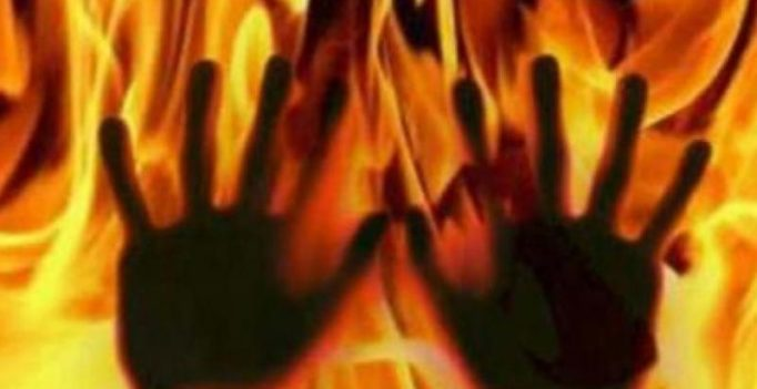 Surat: Man burns 4 pigs, says daughters died in fire, claims insurance