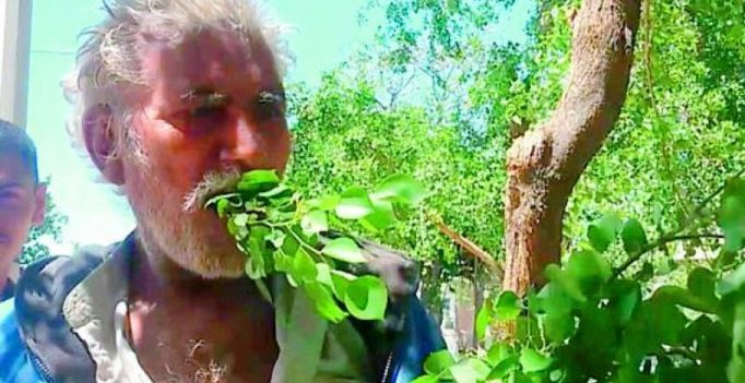 Pakistani man survives on leaves for 25 years, hale and hearty