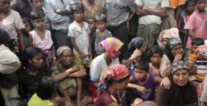India will not take Rohingya refugees, they are a security threat, says BJP