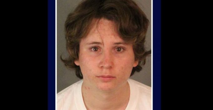 California teen admits to molesting 50 children, mother hands him over to police