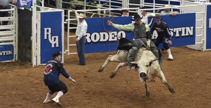 Bull rider died thrice in rodeo, doctor massaged heart back to life with bare hands