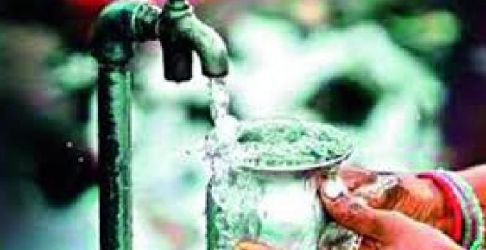 Indian plant seed can bring clean water