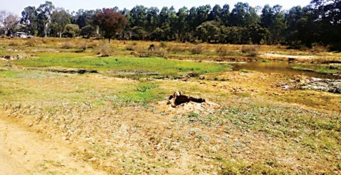 7 lakes on Bengaluru outskirts to be rejuvenated