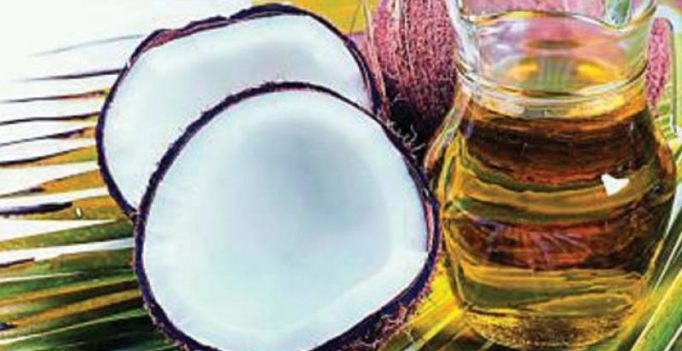 Coconut oil is poison: Harvard professor says health fad is one of 'worst foods'