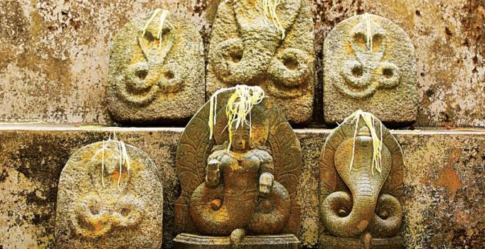 Andhra govt plans ritual to appease snake god after 100 fall victim to snakebites