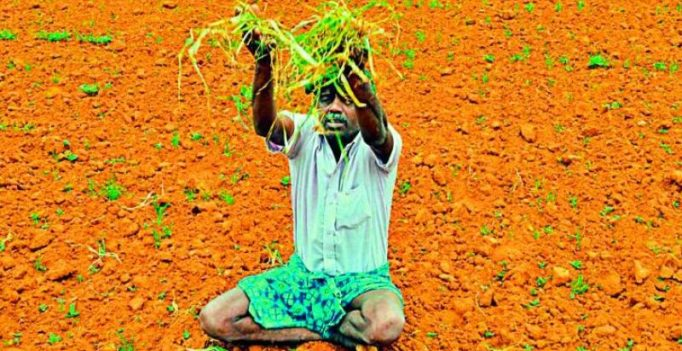 Kurnool: Drought drives farmers from fields to metro cities