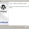 Installing Wordpress With BitNami