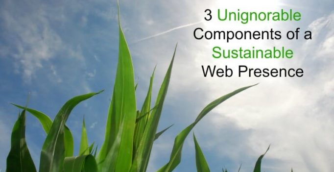 3 Unignorable Components Of A Sustainable Web Presence